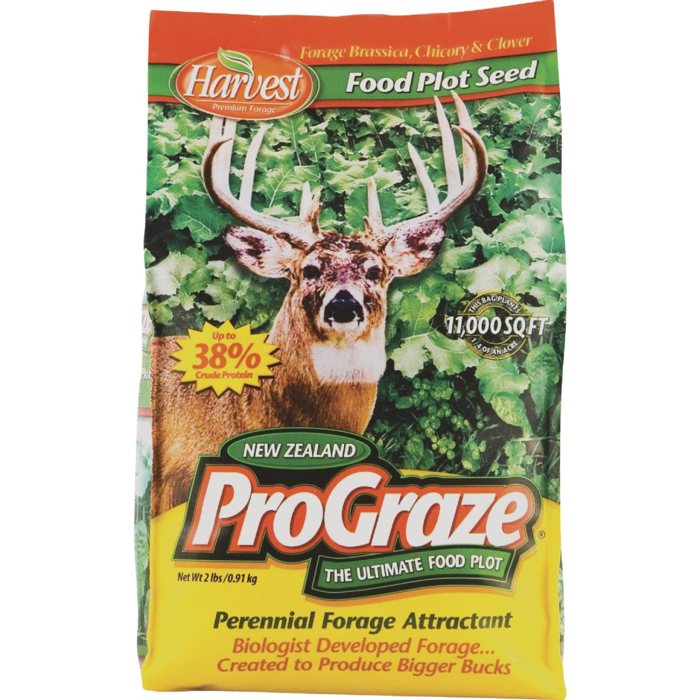 Evolved Harvest Pro Graze 2 Lb. 11,000 Sq. Ft. Coverage Area Brassica, Chicory, & Clover Perennial Deer Forage Image 1